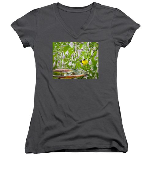 Poolside Perch Women's V-Neck