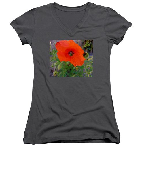 Poppy Flower Women's V-Neck