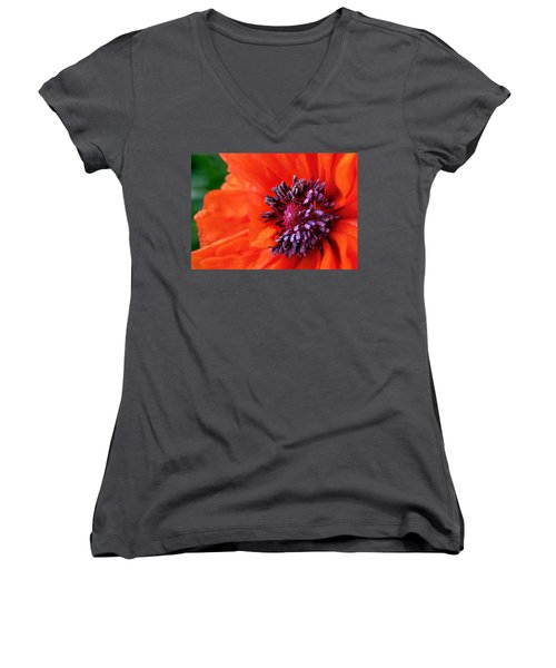 Poppy's Purple Passion Women's V-Neck T-Shirt (Junior Cut) by Bill Pevlor