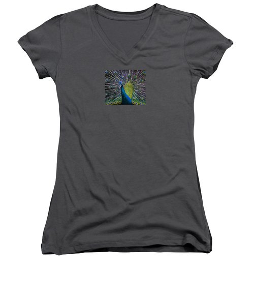 Portrait Of A Peacock Women's V-Neck T-Shirt (Junior Cut) by Venetia Featherstone-Witty