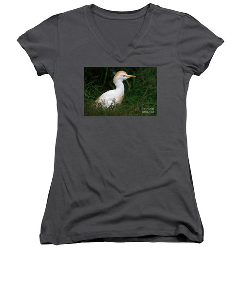 Portrait Of A White Egret Women's V-Neck T-Shirt
