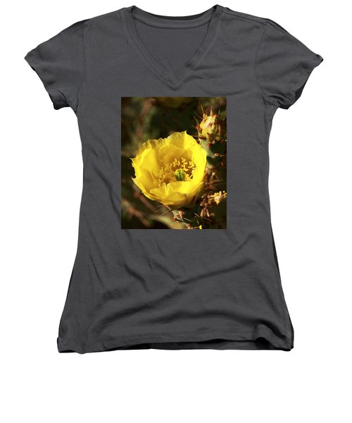 Prickly Pear Flower Women's V-Neck T-Shirt (Junior Cut) by Alan Vance Ley
