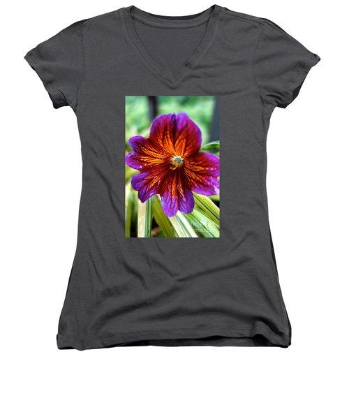 Purple And Orange Women's V-Neck (Athletic Fit)