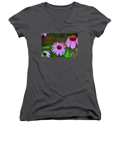 Purple Coneflower - Echinacea Women's V-Neck (Athletic Fit)
