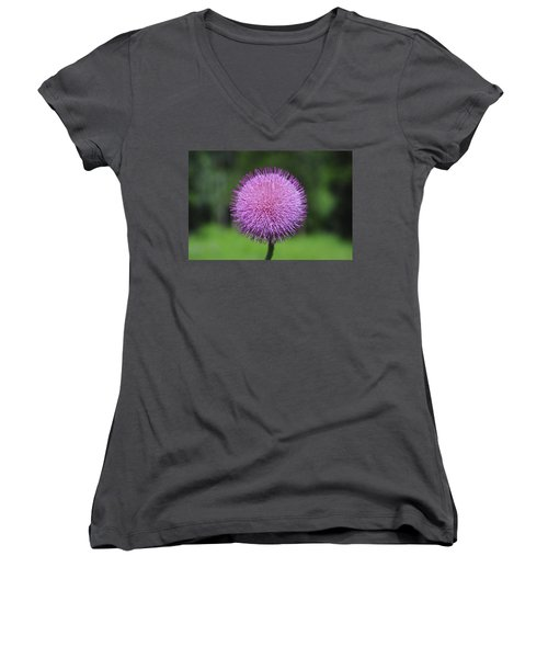 Purple Fuzz Women's V-Neck T-Shirt