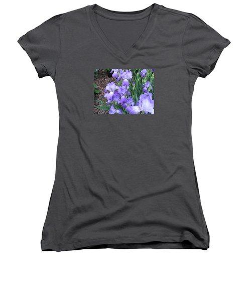 Purple Iris Women's V-Neck T-Shirt