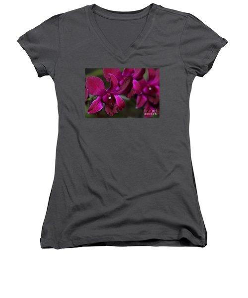 Purple Orchid Women's V-Neck