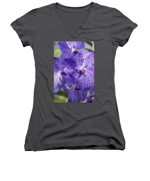 Purple Orchids Women's V-Neck