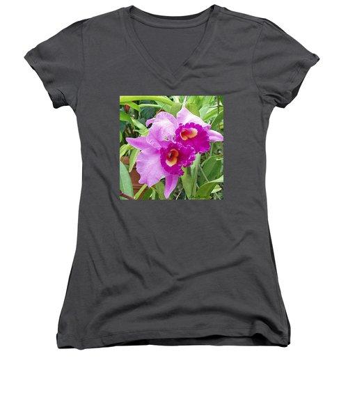 Purple Cattleya Orchids Women's V-Neck T-Shirt (Junior Cut) by Ellen Henneke