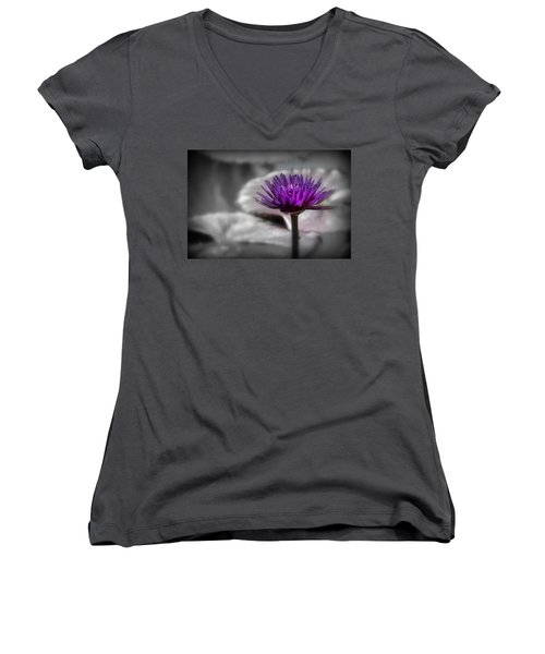 Purple Pond Lily Women's V-Neck T-Shirt