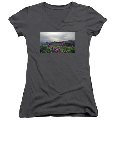 Women's V-Neck T-Shirt (Junior Cut) featuring the digital art Purple Spring In The Big Horns by Cathy Anderson