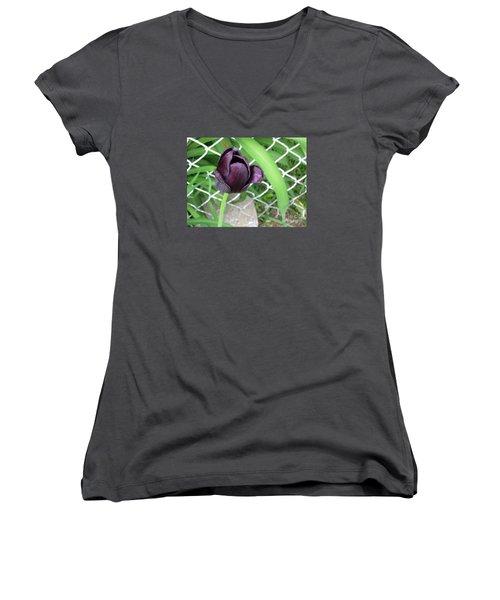 Purple Tulip Women's V-Neck T-Shirt