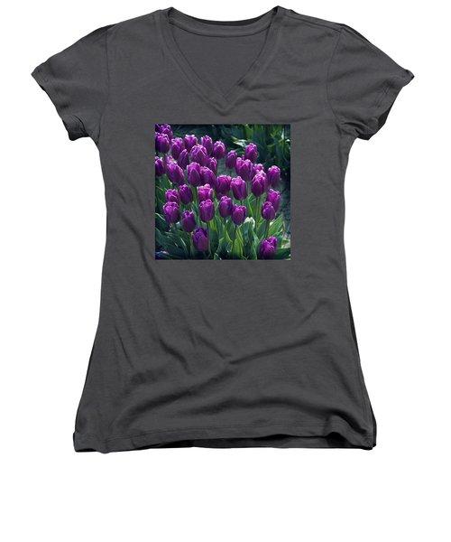 Purple Tulips Women's V-Neck T-Shirt