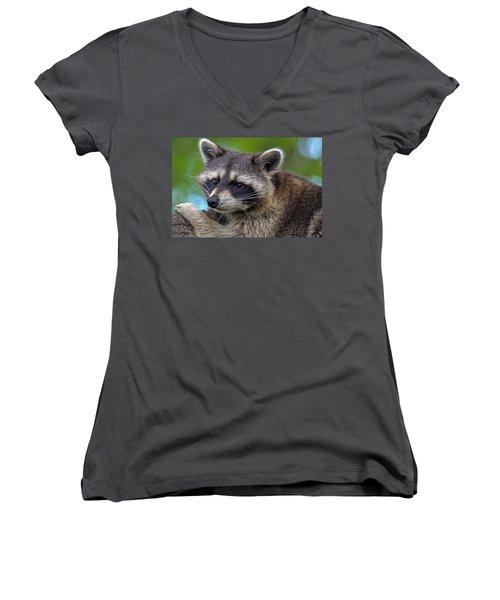 Raccoon Women's V-Neck