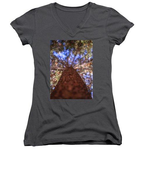 Rainbow Pine Women's V-Neck T-Shirt (Junior Cut) by Aaron Aldrich