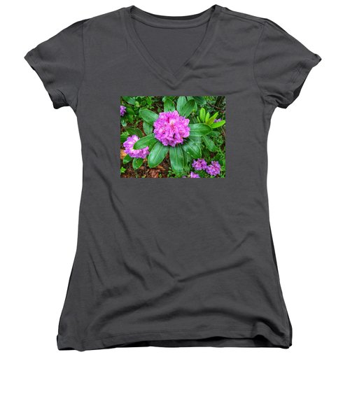 Rainy Rhodo Women's V-Neck