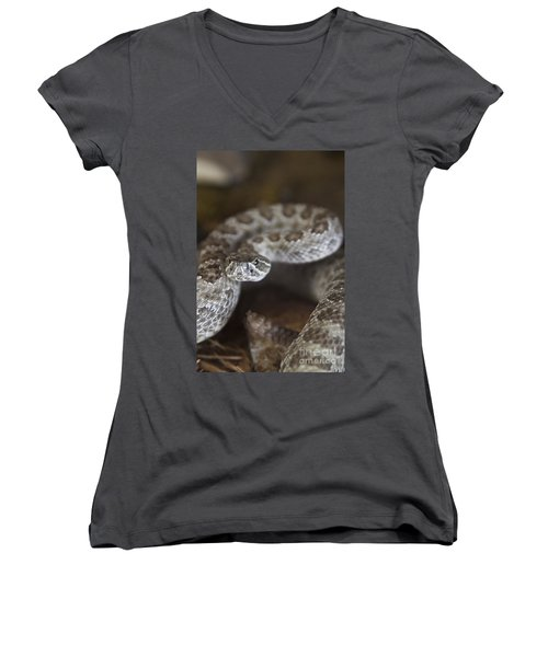A Rattlesnake Thats Ready To Strike Women's V-Neck T-Shirt
