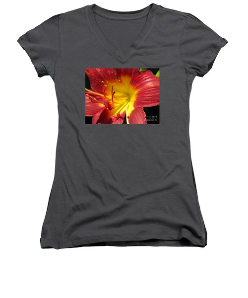 Red And Yellow Day Lily Women's V-Neck