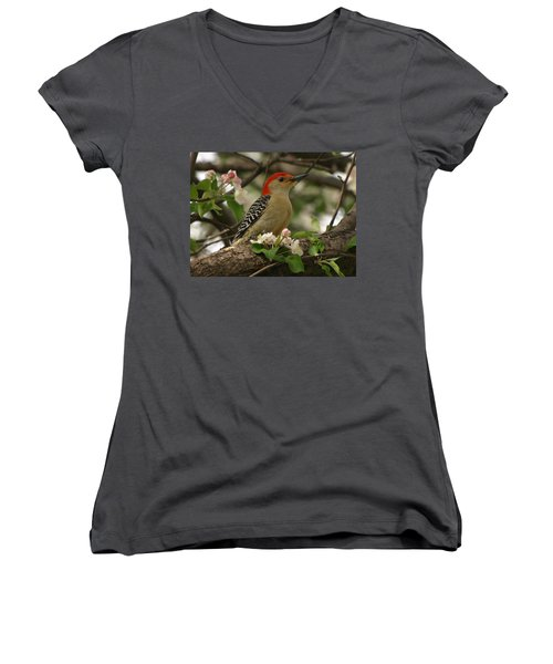 Women's V-Neck T-Shirt (Junior Cut) featuring the photograph Red-bellied Woodpecker by James Peterson