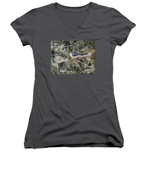 Women's V-Neck T-Shirt (Junior Cut) featuring the photograph Red Breasted Nuthatch by Brenda Brown