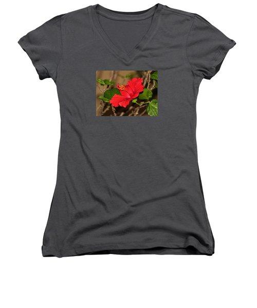 Red Hibiscus Flower Women's V-Neck T-Shirt (Junior Cut)