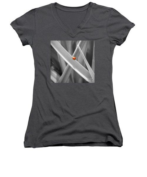 Red Ladybird Women's V-Neck T-Shirt (Junior Cut)