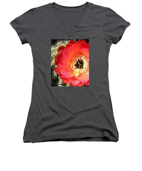 Red Prickly Pear Blossom Women's V-Neck T-Shirt (Junior Cut) by Ellen Henneke