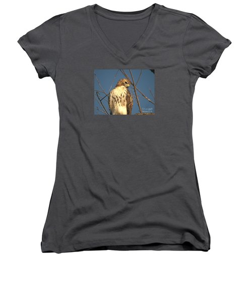 Red Tailed Hawk  Women's V-Neck T-Shirt (Junior Cut) by Susan  Dimitrakopoulos