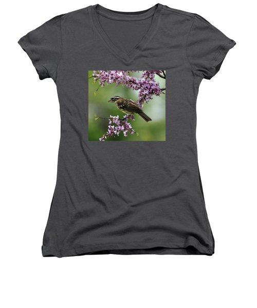 Redbud With Grosbeak Women's V-Neck T-Shirt