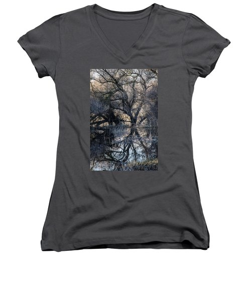 Reflections Women's V-Neck T-Shirt (Junior Cut) by Brian Williamson