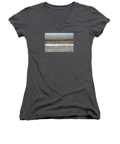 Refuge View 2 Women's V-Neck T-Shirt (Junior Cut) by James Gay