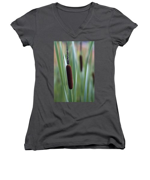Regal American Cattails Women's V-Neck T-Shirt (Junior Cut) by Kathy Clark