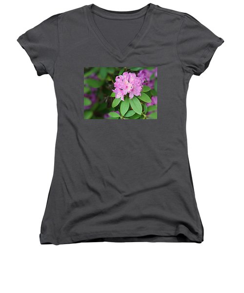 Rhododendron Women's V-Neck T-Shirt (Junior Cut) by Kristin Elmquist