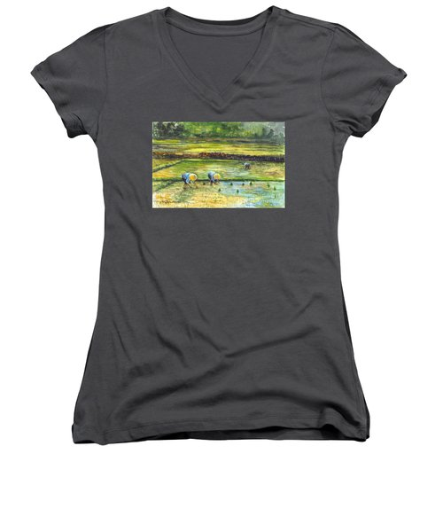 The Rice Paddy Field Women's V-Neck T-Shirt (Junior Cut) by Carol Wisniewski