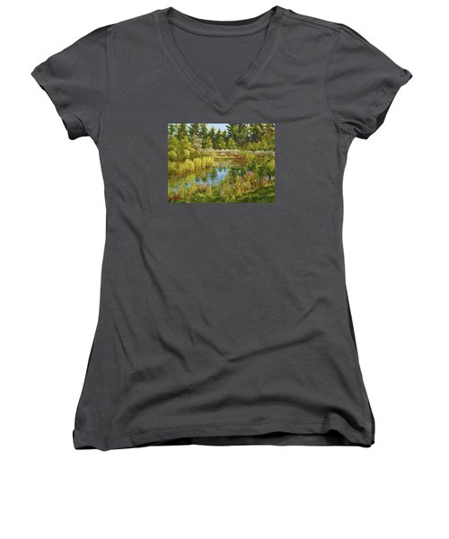 Rock Valley Pond Rockford Il Women's V-Neck T-Shirt (Junior Cut) by Alexandra Maria Ethlyn Cheshire