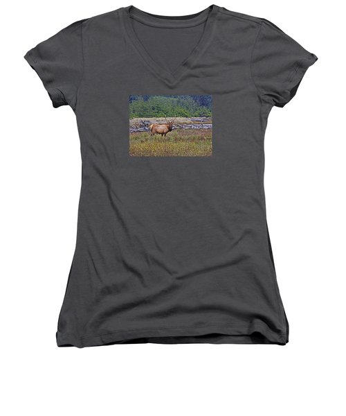 Roosevelt Elk Women's V-Neck T-Shirt (Junior Cut) by Mark Alder