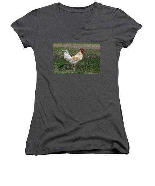 Rooster Women's V-Neck