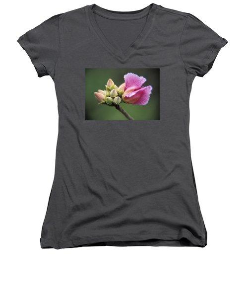 Rosa De Cerrado Women's V-Neck T-Shirt