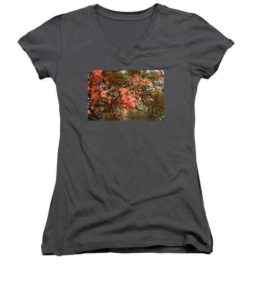 Rose 180 Women's V-Neck T-Shirt (Junior Cut) by Pamela Cooper