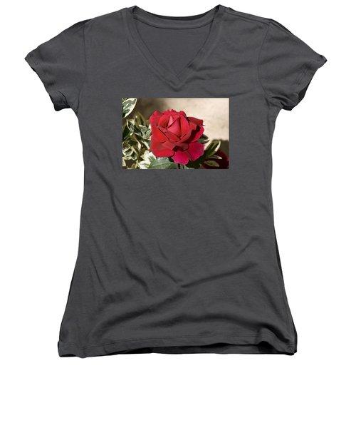 Rose 5 Women's V-Neck T-Shirt (Junior Cut)
