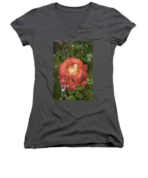 Rose 6 Women's V-Neck T-Shirt (Junior Cut) by Andy Shomock