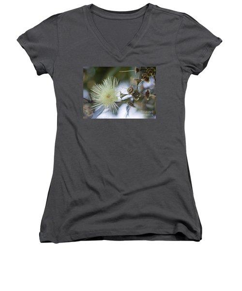 Rose Apple Blossom Women's V-Neck T-Shirt
