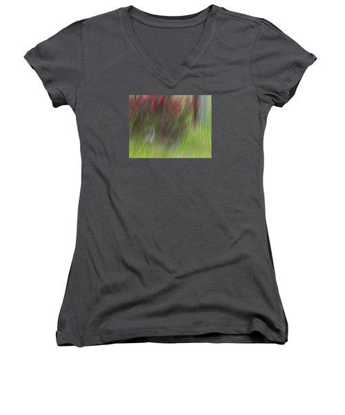 Roses Women's V-Neck T-Shirt (Junior Cut) by Mark Alder