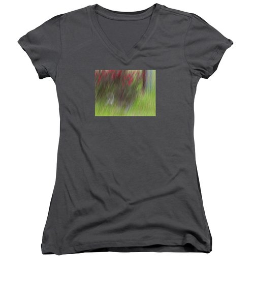 Roses Women's V-Neck (Athletic Fit)