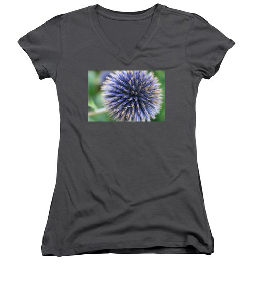 Royal Purple Scottish Thistle Women's V-Neck T-Shirt (Junior Cut) by Peta Thames