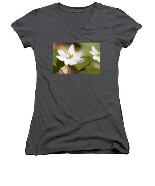 Rue Anemone Women's V-Neck T-Shirt (Junior Cut) by Melinda Fawver