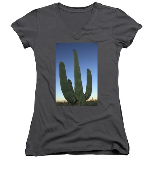 Women's V-Neck T-Shirt (Junior Cut) featuring the photograph Saguaro Cactus At Sunset by Alan Vance Ley