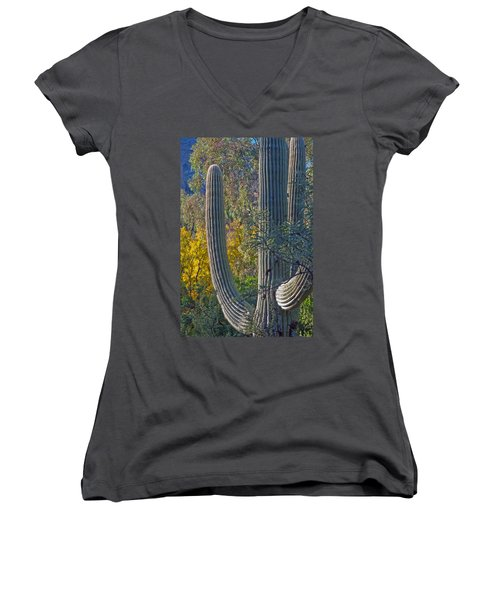 Saguaro Fall Color Women's V-Neck T-Shirt (Junior Cut) by Tam Ryan