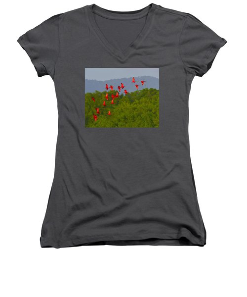 Scarlet Ibis Women's V-Neck T-Shirt