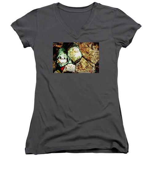 Scratch Women's V-Neck T-Shirt